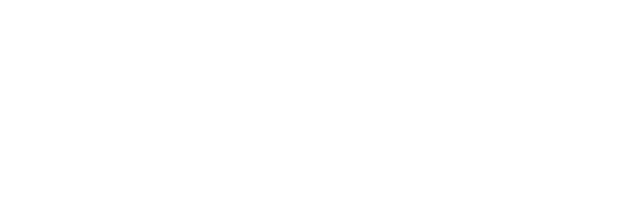 Wildberry Village Logo